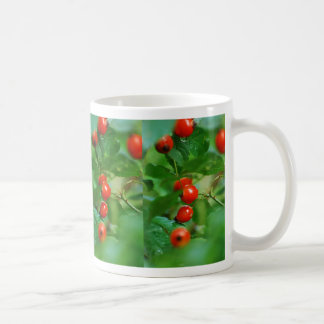 Rosehip bush after rain coffee mug