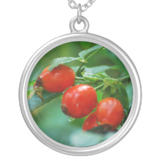Rosehip bush after rain silver plated necklace