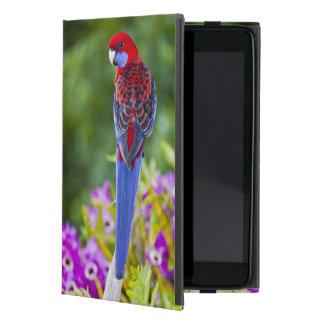 Rosella carmesí y contexto de las orquídeas Laming iPad Mini Carcasa