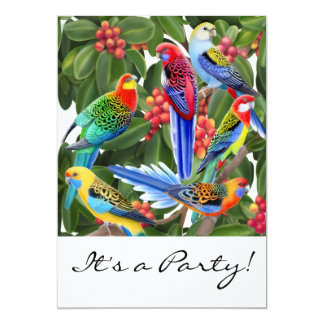 Rosella Parrots Customizable Invitation