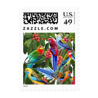 Rosella Parrots in Fig Tree Postage