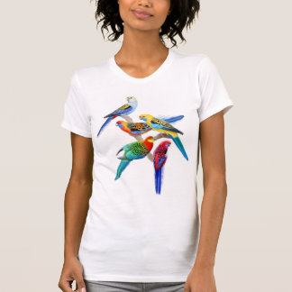 Rosella Parrots Scoop Neck Shirt