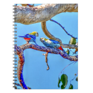 ROSELLA'S IN A TREE AUSTRALIA WITH ART EFFECTS NOTEBOOK