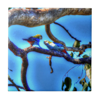 ROSELLA'S IN A TREE AUSTRALIA WITH ART EFFECTS TILE