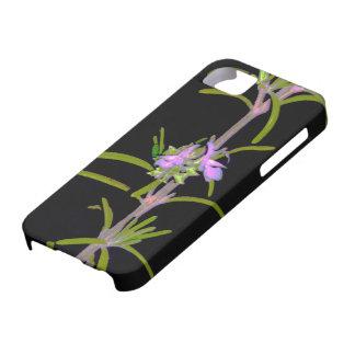 Rosemary en la floración funda para iPhone SE/5/5s