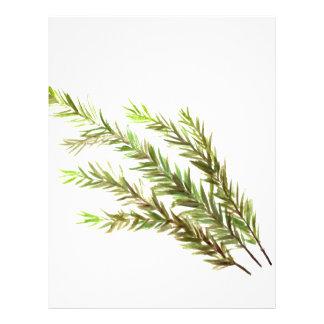 Rosemary herb kitchen art watercolour painting letterhead