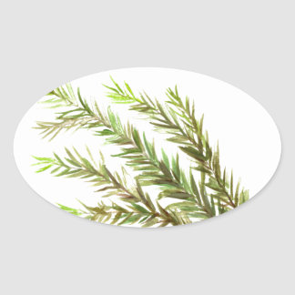Rosemary herb kitchen art watercolour painting oval sticker