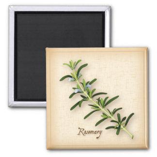 Rosemary Herb Magnet