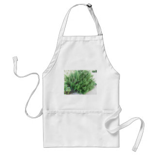 Rosemary plant adult apron