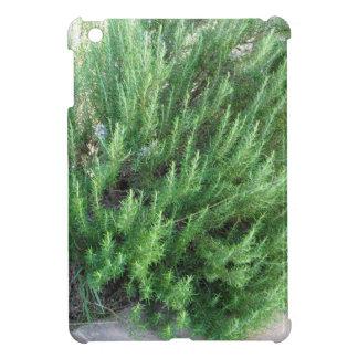 Rosemary plant iPad mini case