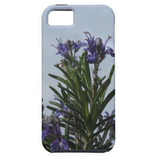 Rosemary plant with flowers against the sky iPhone SE/5/5s case