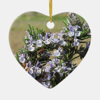 Rosemary plant with flowers Double-Sided heart ceramic christmas ornament