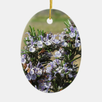 Rosemary plant with flowers Double-Sided oval ceramic christmas ornament