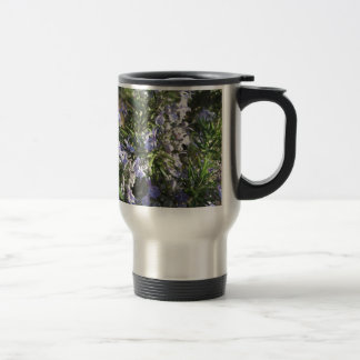 Rosemary plant with flowers in Tuscany, Italy Travel Mug