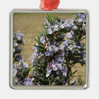 Rosemary plant with flowers square metal christmas ornament
