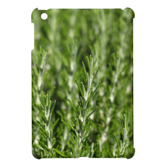 Rosemary (Rosmarinus officinalis) branches Cover For The iPad Mini