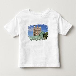 Rosenborg Palace, Copenhagen, Denmark Toddler T-shirt