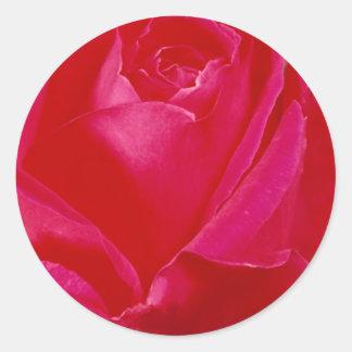 Roses 296 classic round sticker