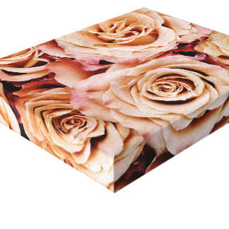 roses-366170 dusty light coral pink natural petals stretched canvas prints