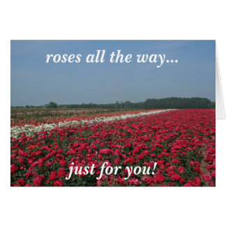 roses all the way greeting card