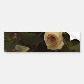 Roses and Berries - Pink Peace Rose Bumper Sticker