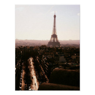 Roses and Eiffel Towers . Poster