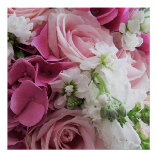 Roses and Hydrangeas Poster/Print