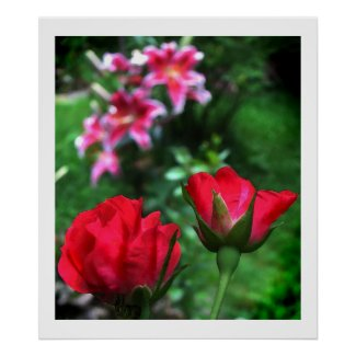 Roses and Lilies print