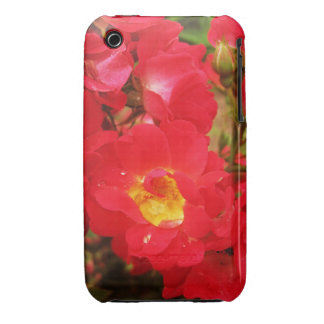 Roses and Raindrops iPhone 3G 3GS Case Case-Mate iPhone 3 Cases