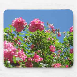 Roses and The Blue Sky Mouse Pad