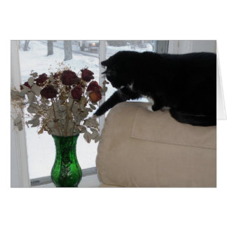 Roses and the Cat Card