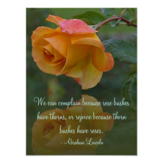 Roses and Thorns Inspirational Poster