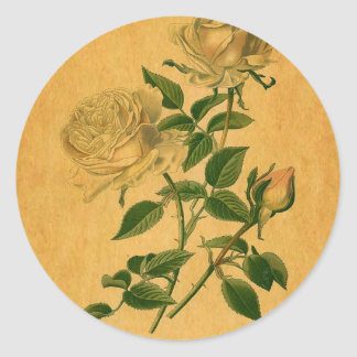 Roses are Golden Classic Round Sticker