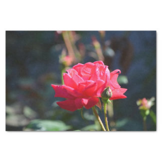 "Roses are NY State Flower 10"" X 15"" Tissue Paper"