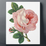 "Roses are Pink Plaque<br><div class=""desc"">Who doesn&#39;t like pink roses? That&#39;s why I added them to items here. They make everything look pretty!</div>"