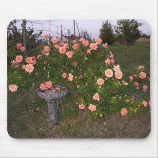 Roses & birdbath mouse pad