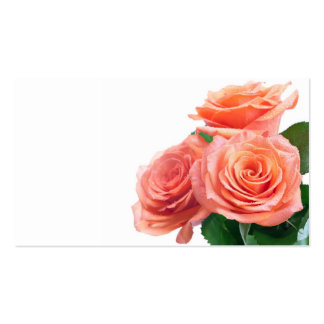 Roses Bouquet With Dew Drops Isolated On White Business Card