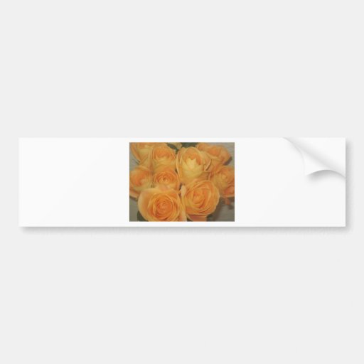 Roses Bumper Sticker