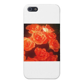 Roses Cover For iPhone SE/5/5s