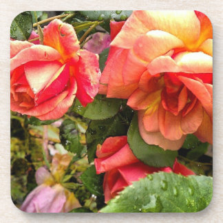 roses drink coaster