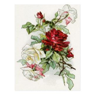 Roses flowers vintage rose victorian postcard