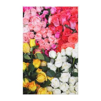 Roses for sale, San Miguel de Allende, Mexico Canvas Print