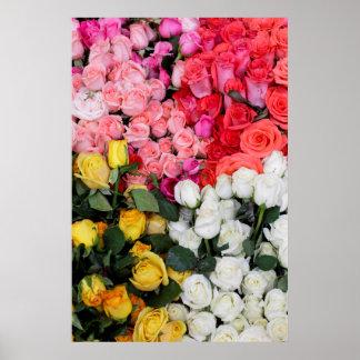 Roses for sale, San Miguel de Allende, Mexico Poster