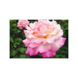 Roses from the Heart Canvas Prints
