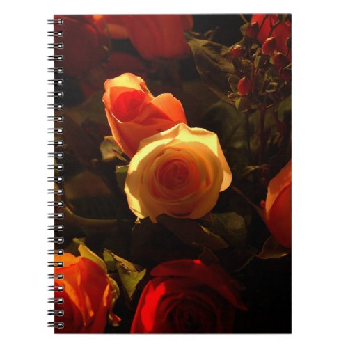 Roses I, Orange, Red and Gold Glory Notebook