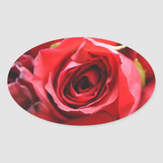 Roses in a bowl oval sticker