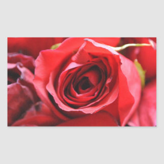Roses in a bowl rectangular sticker