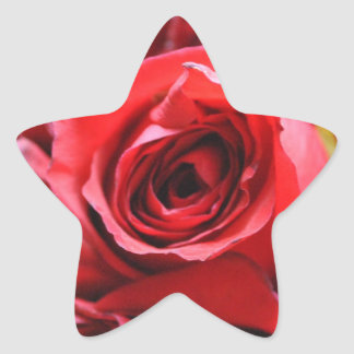 Roses in a bowl star sticker