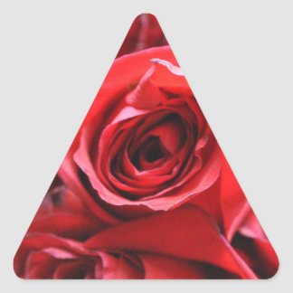 Roses in a bowl triangle sticker