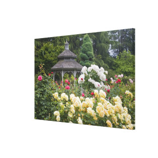 Roses in bloom and Gazebo Rose Garden at the Canvas Print